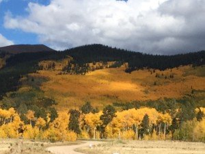 it's fall! get ready for snowboard season